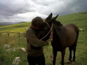 Su muli da Sicilia a Quirinale per messaggio gente del Sud.