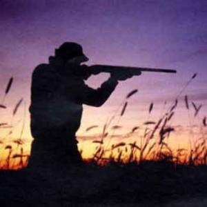 Sicilia: Tar ribadisce prosecuzione caccia secondo regole 2010-2012.