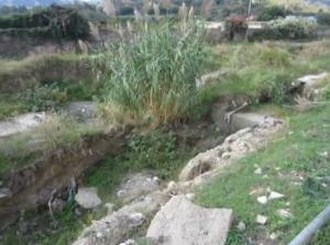 I Consiglieri  della II Circoscrizione Giampiero Terranova e Francesco Gallo chiedono di monitorare la parte a monte del torrente di Zafferia.