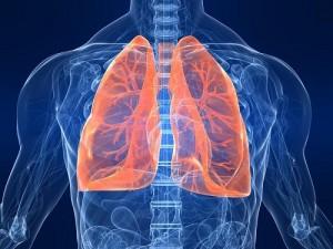 Catanzaro. Specialisti pneumologi impegnati in una giornata formativa dedicata alla BPCO.