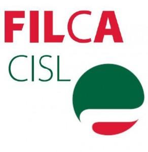 """Palermo. Lavoro, Filca Cisl al ministro Toninelli: """"Convochi un tavolo per la prosecuzione delle opere già iniziate dalla Cmc"""""""