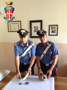 Patti (Me); una persona arrestata dai Carabinieri per detenzione ai fini di spaccio di sostanza stupefacente.