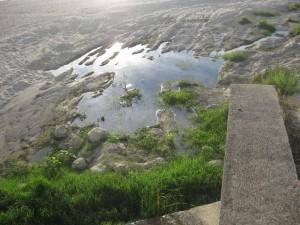 Guardavalle Marina (Cz). Segnalato degrado in spiaggia.