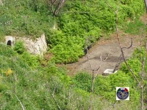 Una denuncia per uccellagione  ad opera del Corpo Forestale Regione siciliana