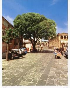 Piazza principale S. Andrea Jonio CZ