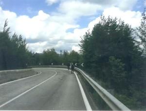 curva Mingone Agnone lato Isernia