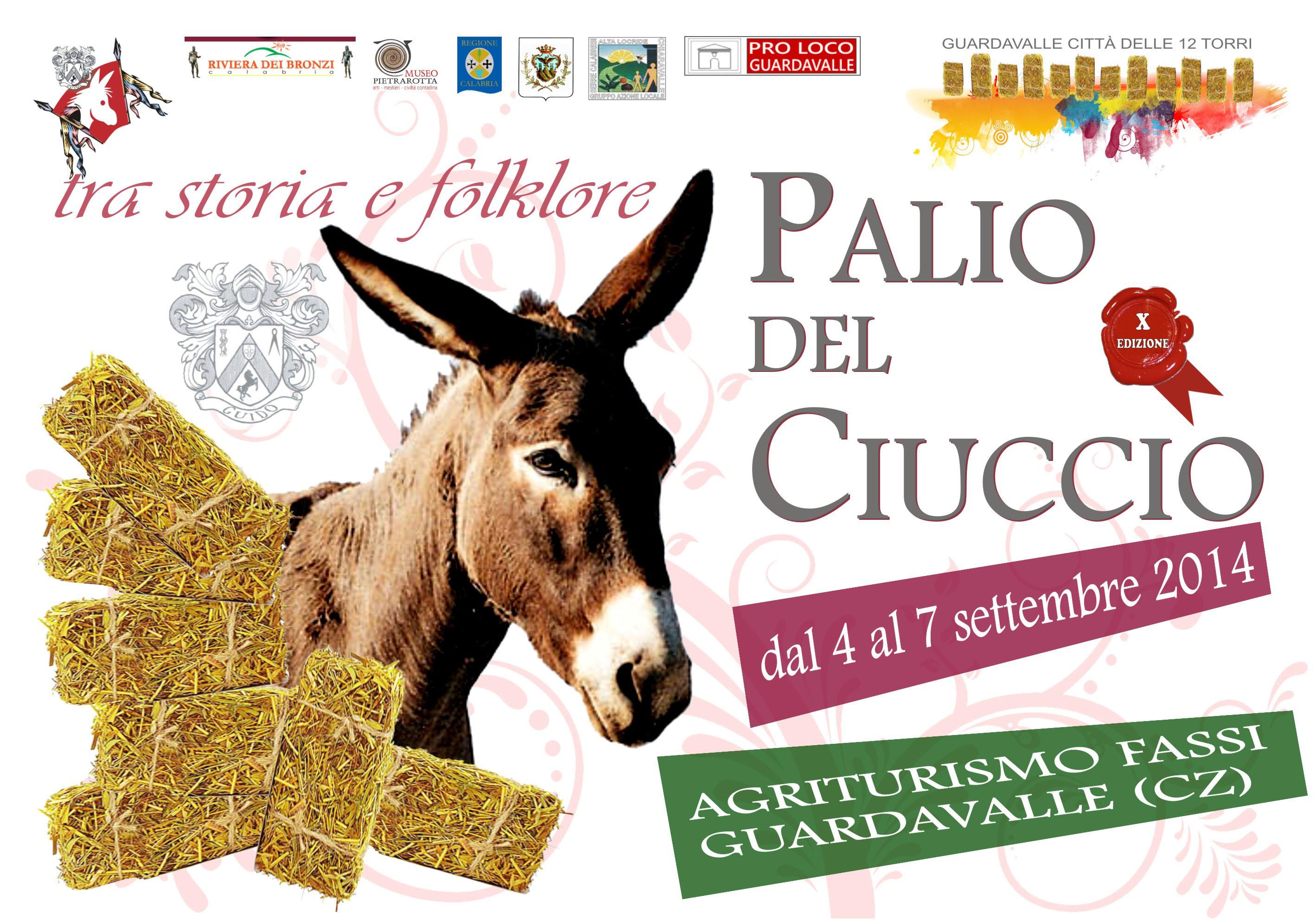 palio Ciuccio 2014