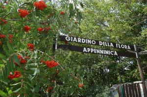 giardino flora appeninica capracotta - ingresso - 2014