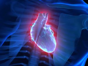 cardiologia-e1400313050750
