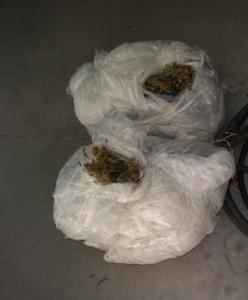 Carabinieri del Gruppo di Locri (Rc): 4 Arresti e 11 denunce, nonchè 2 piantagioni di canapa indiana rinvenute e oltre 17 chili di marjuana sequestrati