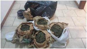 San Luca (Rc). Ritrovamento di 5 Kg di marijuana pronta ad essere immessa sul mercato.