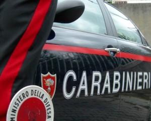San Luca (Rc). Arrestati madre e figlio  per coltivazione e detenzione ai fini di spaccio.