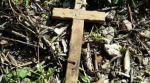 Satanismo allarme messe nere animali trucidati sul for Cabine nere del torrente