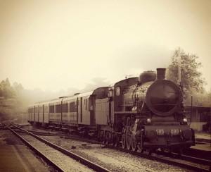 treno-a-vapore con tante carrozze x TRENO DI IDA