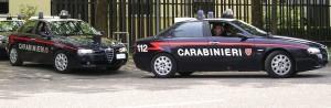 Reggio Calabria provincia. Interventi ieri dei Carabinieri della Compagnia di Locri in diversi centri della zona.