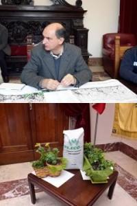 """Messina. Presentata a Palazzo Zanca l'iniziativa """"Verde bene comune, prima giornata di Guerrilla Gardening comunale""""."""