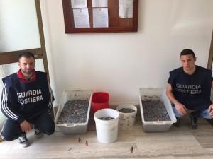Melito Porto Salvo (Rc). Guardia Costiera a tutela delle risorse ittiche. Sequestrato un quintale di cicirello pescato illegalmente