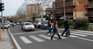 viale doria davanti cittadella universitaria (3)