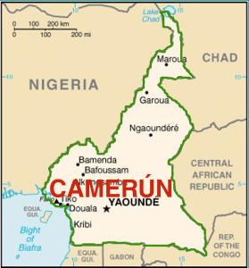 camerun nel contesto regionale