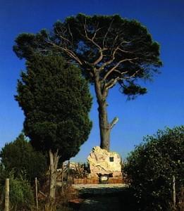 pino e tomba di pirandello - agrigento