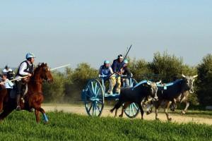 carresi - azzurri