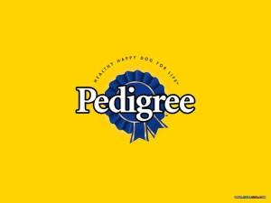 PEDIGREE1024x768