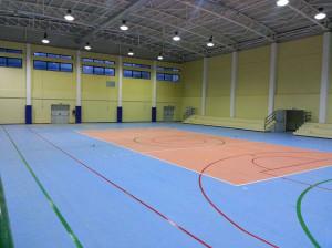 Borgia (Cz): il Comune sta valutando la gestione diretta del Palazzetto dello sport.