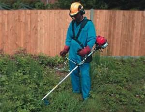 pulizia giardini