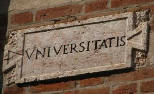 universitatis - marmo