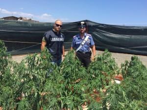 """Locri (Rc). Carabinieri, """"Focus 'ndrangheta"""": 4 arresti, alcune denunce e numerose persone controllate"""
