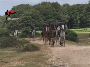 Rgt Cavallo