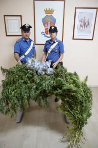 Messina, i Carabinieri arrestano due fratelli per produzione e detenzione ai fini di spaccio di sostanze stupefacenti.