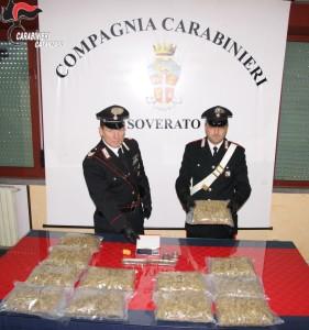 Montepaone (Cz). Carabinieri: 4 chili di marijuana a casa della suocera, arrestato il 40enne
