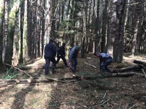 Grotteria (Rc). Carabinieri: : arrestato un 59enne del posto per furto aggravato.