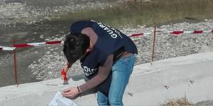 Reggio Calabria e provincia. Guardia Costiera: apposti i sigilli ad un'area demaniale/fluviale e ad un immobile abusivo.