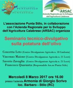 Monasterace (Rc). Associazione Punta Stilo: Seminario potatura olivi, mercoledì 8 marzo alle ore 16,00