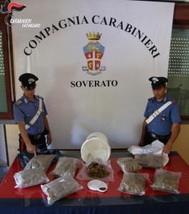 San Sostene (Cz). Oltre 4 kg di marijuana nel magazzino del bar: 3 arresti dei Carabinieri