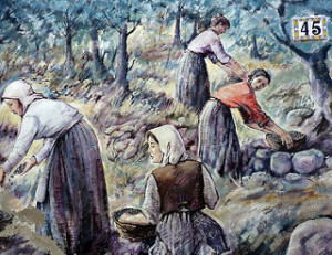 murales-sardegna-donne-raccolgono-olive