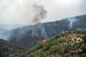 La Calabria continua a bruciare. Testo e fotografie di Giuseppe Intrieri