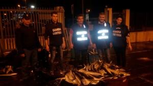 """""""Focus n'drangheta"""": controlli sulla filiera della pesca. Blitz agli imbarchi per la Sicilia a Villa San Giovanni (Rc). Sequestrati 1.250 kg di prodotti ittici."""