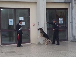 Milazzo (Me). I Carabinieri effettuano controlli al Liceo Scientifico Statale di Milazzo.
