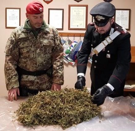 San Luca (Rc). Controlli straordinari dei carabinieri: a san luca sequestrata marijuana in edificio del centro abitato.