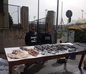 Reggio Calabria. Oltre un quintale di prodotti ittici sequetrati per cattivo stato di conservazione.