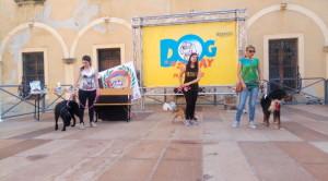 Milazzo (Me). Ritorna il 2 giugno l'appuntamento col Dog Day in marina Garibaldi