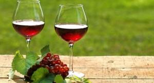 Frascineto  (Cs). 5ª Edizione Festa del Vino, 4 e 5 agosto 2018