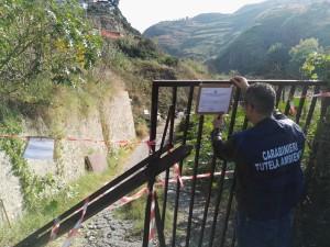 Reggio Calabria. Carabinieri sequestrano area adibita a discarica abusiva.