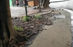 piazza-roma-con-resti-cantiere-e-pavimentazione-danneggiata-2
