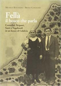 5-copertina-libro-fell_-di-bruno-congiust_