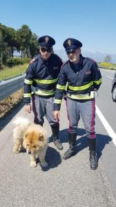 polizia_salva_cane