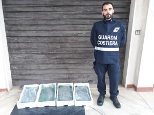 Borgia (Cz). Sequestrati 20 kg di novellame di Sarda da parte dell'Ufficio Circondariale Marittimo di Soverato